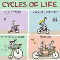 cyclesoflife-blog