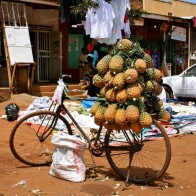 ananas_bucycle
