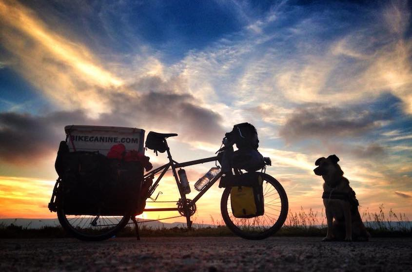 Bikecanine cicloturismo_urbancycling_6
