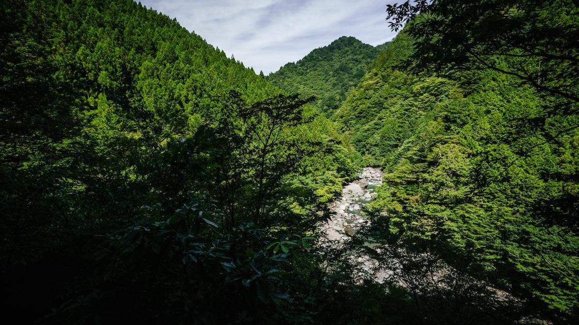 "Mt Tsurugi ""Super Forest Road"". Giappone in gravel bike_4"