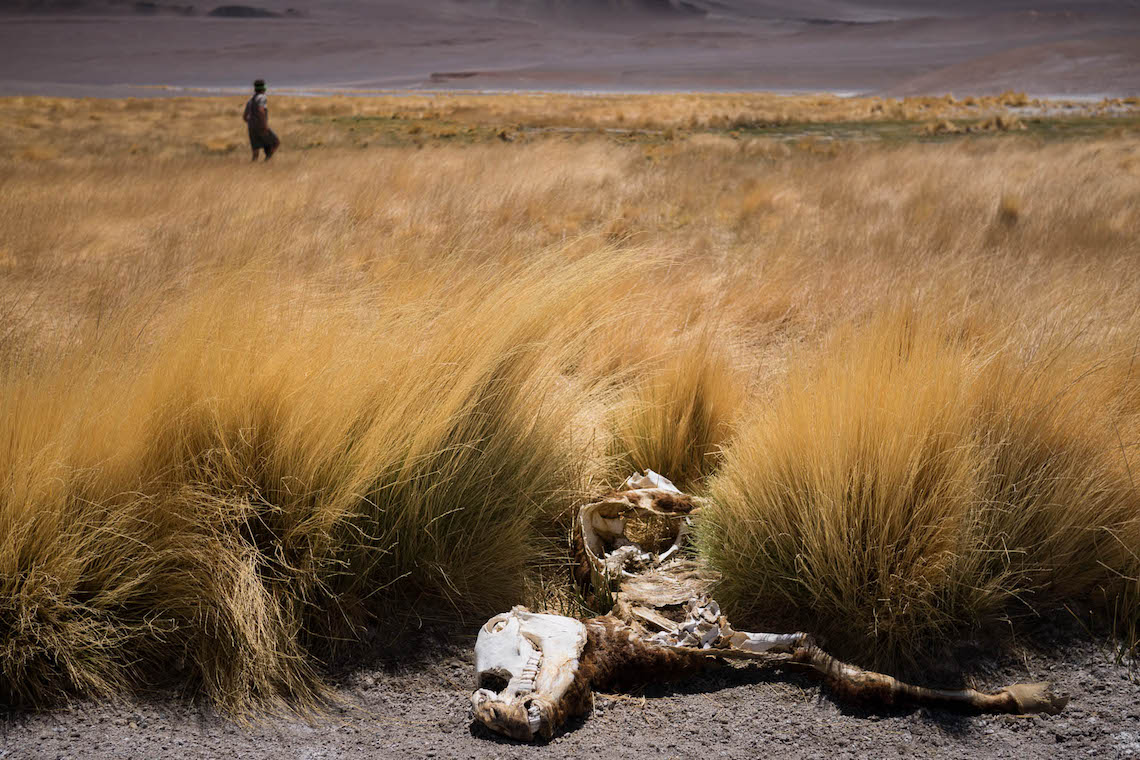 Puna de Atacama bikepacking_9