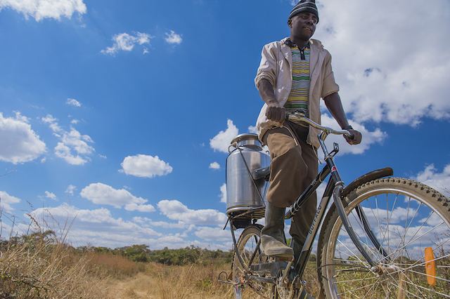 Palabana on The Move. Biciclette per l'Africa