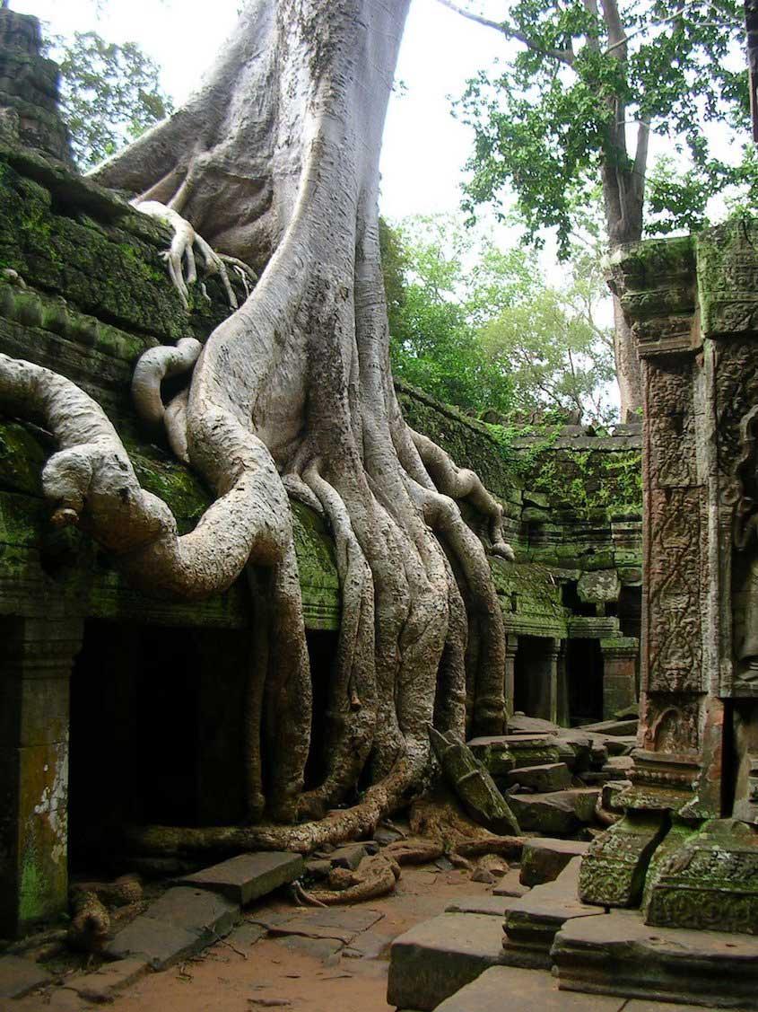 Cambogia otravidaesposible_urbancycling_7