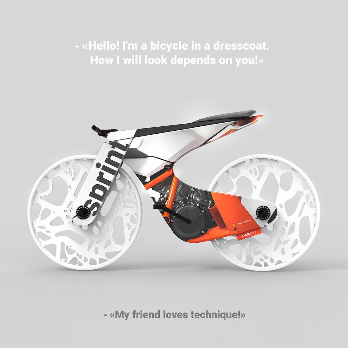 Bicycle in a dress by Maya Prokhorova_
