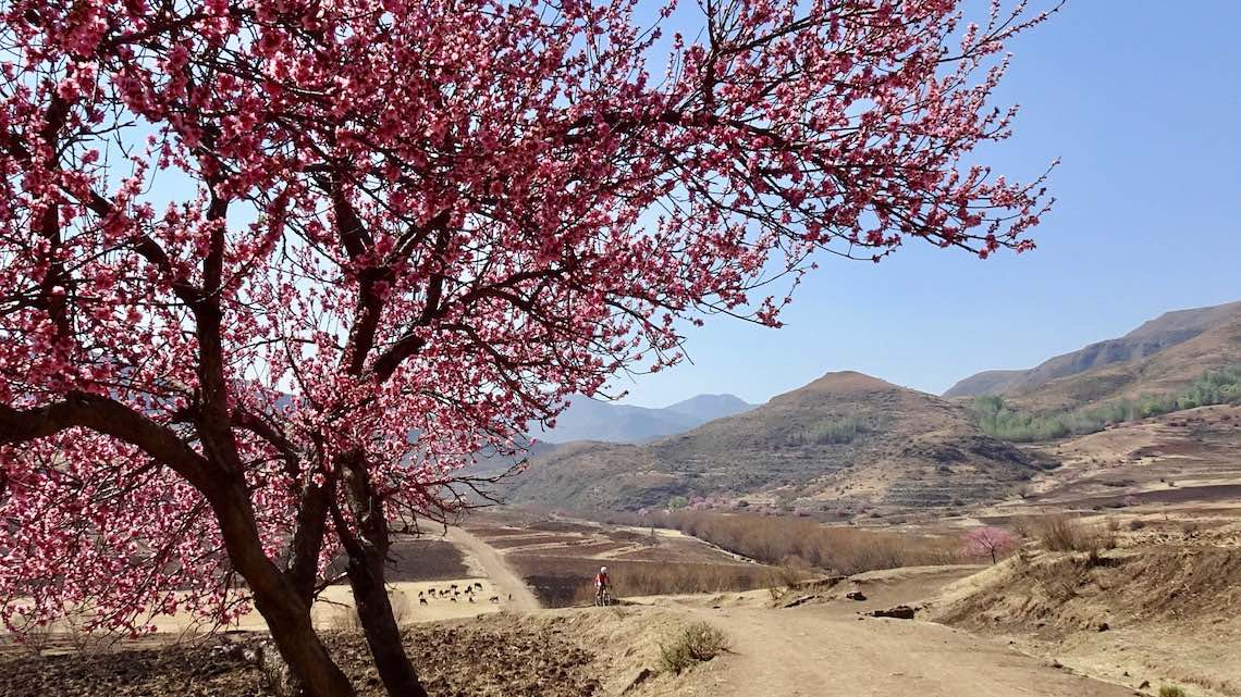 Lesotho in gravel bike by XPDTN3_6